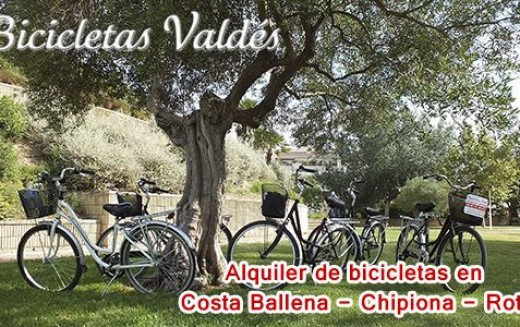 Bicycles Valdes. Rental, selling and repairing bicycles in Costa Ballena